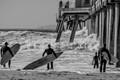 Surf's Up-1064