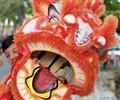 True heart of the Dragon