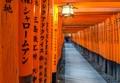 Orange Torii Gates