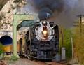 UP Train_002