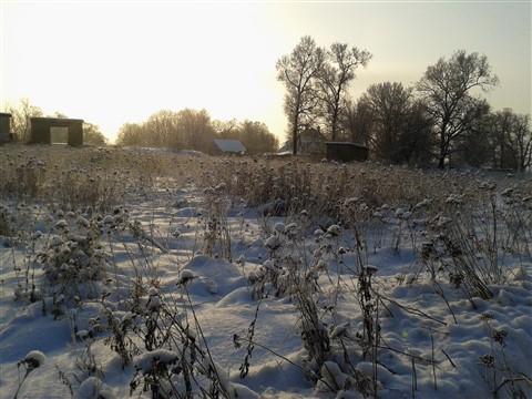 2012-01-19 11.45.20_1