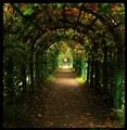 Arbor Tunnel