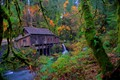 This is the Ceder Creek Grist Mill in Woodland, WA. It is the last working mill in WA and ran completely by volunteers.