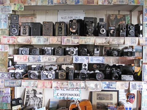 My camera collection