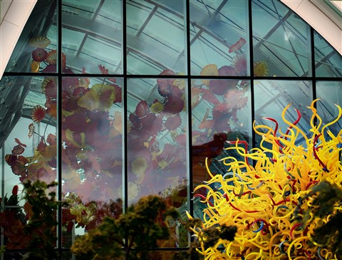 Chihuly_5310_5310