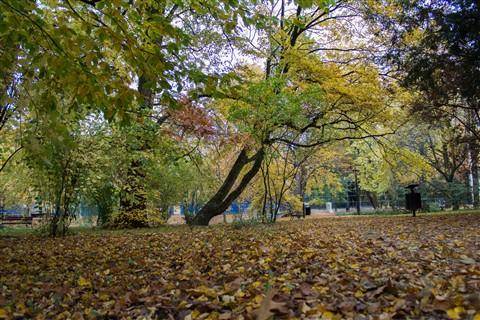 Poljska 23.10.2012. IMG_5473