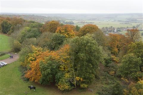 Ashridge 1 Oct11