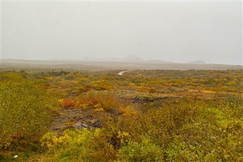 Iceland: Autumn Landscape