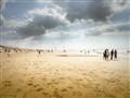 Beach Noordwijk aan Zee