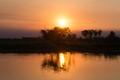 Sunset in Corroboree Billabong, NT, Australia