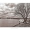 River-Yare-at-Cantley-2-Duotone