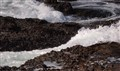 Waves on Point Lobos
