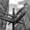 68_Bruxelas_GroteMarkt_Set013_edited-1_01