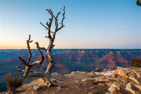 Twilight on Grand Canyon