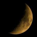Moonspell...