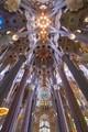 The Sagrada Familia Cathedral