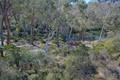 Rhodo Gardens,  Blackheath, NSW