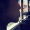 Talk - Silhouette of young lady on Hong Kong Bus