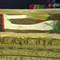 Amon-Priests Coffins RMO 3D