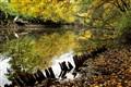 Overcast autumn day's aquarelle