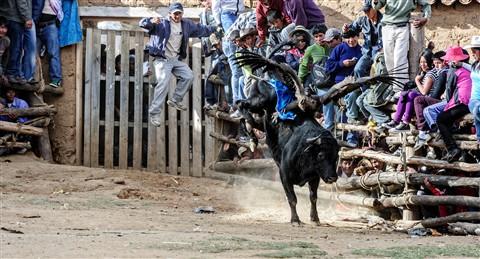 Peru_2012-07-29_16-41_07