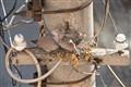 An Urban Nest