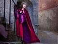 Queen Cat at Hurst Castle