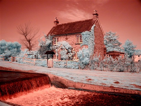 Cottage Fence infrared