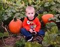 Grandson Connor in the pumpkin patch