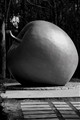 Newton under the apple; Eve behind the apple.