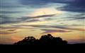 Autum Sky