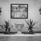 dyrham house conservatory B&W-2