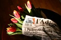 Tulips and newspaper