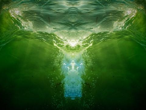 5543wave-angel-web