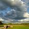 Farm looking East