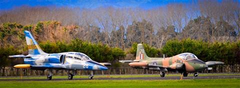 Ardmore Airport - 400mm 2.8