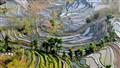 Yuanyang Hani Terraced Field, Yunnan, China