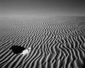 Viana's Desert