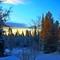 winter scene plain
