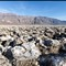 Death Valley 2011-667
