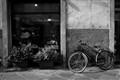 Lucca Bike b&w2-8393 dp review