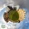 Green Planet WM