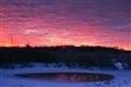 Sunrise at Jasper Pulaski Fish and Wildlife Area