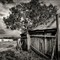 Coolamon-43-Edit-X2