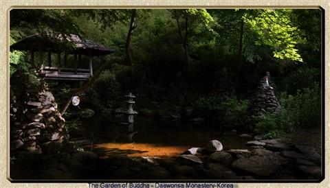 Secret Garden 1-DSC03515