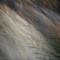 PA156839: OLYMPUS DIGITAL CAMERA