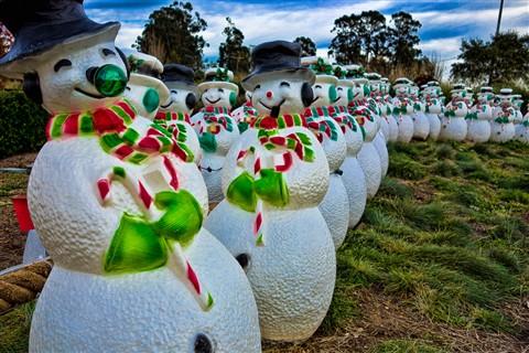 Cornerstone_Christmas_Snowmen_(1_of_1)
