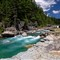 Avalanche River, National Glacier Park_2_rp