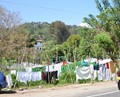 Laundry in Kandy