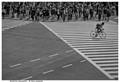Lone cyclist - Shibuya Crossing, Tokyo